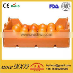 Corrugated Plastic Food Packaging Box