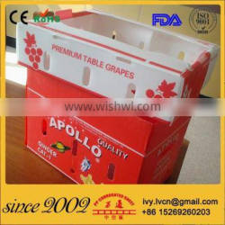 China Factory Reusable Foldable Corrugated Plastic Box For Vegetables