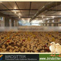 ISO9001 qualified automatic poultry farm design in broiler