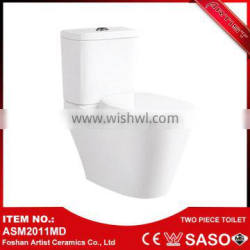 Export Product Hot Sale Disabled People Two Piece Digital Toilet