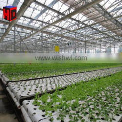 Factory Price High-tech Greenhouses with Hydroponic Systems