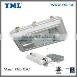 Electrodeless Discharge Lamp Induction Tunnel Light