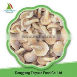 Best Prices and Good Quality for Frozen Mushroom Nameko