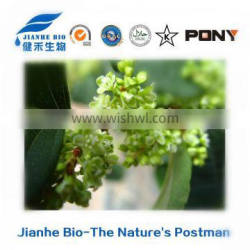 Medicine,food,comestic using 100% Natural Giant Knotweed Extract/ resveratrol powder 98% /501-36-0/HPLC