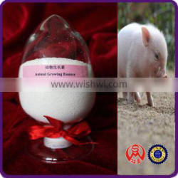 Animal Growing Essence feed for fattening pigs