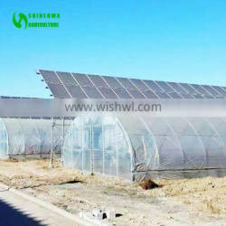 Commercial Mushroom Tunnel Plastic Greenhouse Film Agriculture