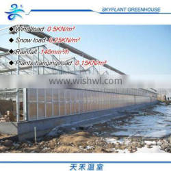 Hot Sale and Easily Installed vegetables Greenhouse