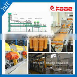 Turnkey Tangerine juice production line manufactured in Wuxi Kaae