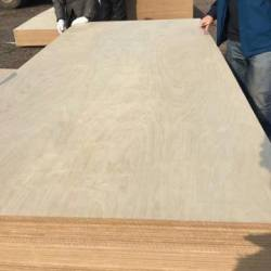 best selling marine formwork 4x8 ft plywood for construction use