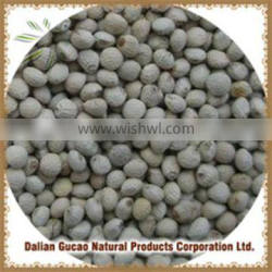 new High Germination Low pesticide residue perilla seeds