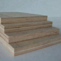 Dynea Brown Film Faced Plywood/Commercial Plywood/Construction Plywood
