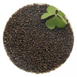Worldful Blackgold Humate Slow Release Granule Coated Urea Nitrogen Fertilizer
