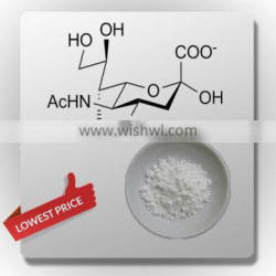 Top quality Sialic acid at lowest price in China