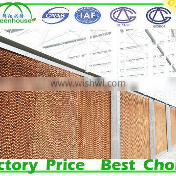 Agricultural Greenhouse and Factory use evaporative cooling pad