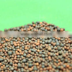 Ceramic particle for water treatment