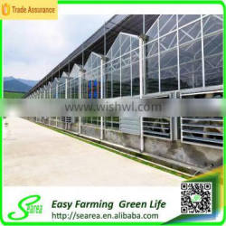 hot sale commerical glass greenhouse shade green house design