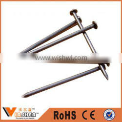 Manufacturer common nails from china /wood nails /wire nails price for Africa Market