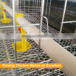 Durable Automatic Poultry Chicken Drinking Water Equipment