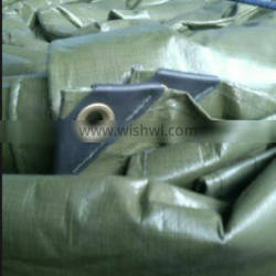 12x12 Canvas Tarp Ground Covering