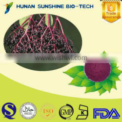 Natural and GMP Certified Black Elderberry Extract