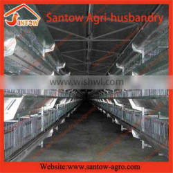 New Type layer poultry rearing cages/chicken layer cage