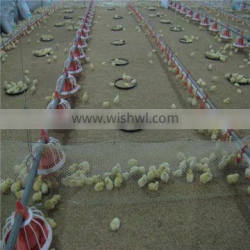 poultry feeder and drinker equipment