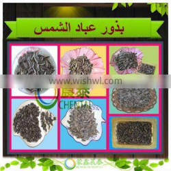 White/ Black Hulled White Sunflower Seeds 2015 New Crop