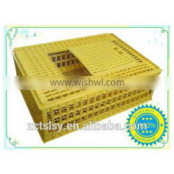 the plastic all kinds of longistic chicken cage /box