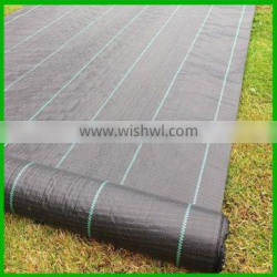 PP or PE Ground Cover Sheet/Anti Weed Mat