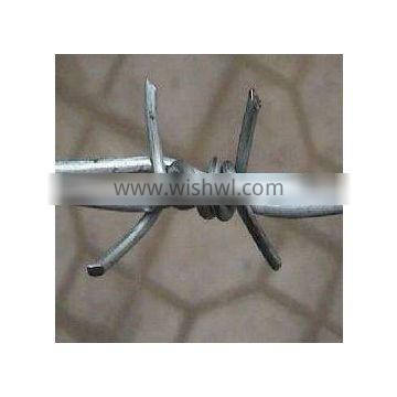 Electro galavnized and hot-dipped galvanized barbed wire supplier