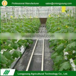 Customizable agricultural plants growing industrial hydroponic system