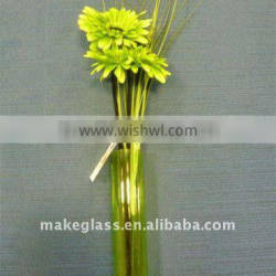 glass vase for home decoration
