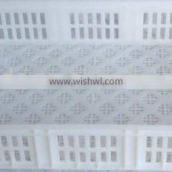 babychick plastic crate/plastic crate for fruits and foods