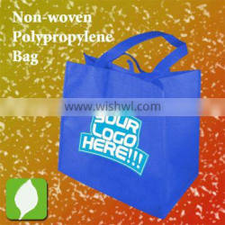 Promotion PP Bag
