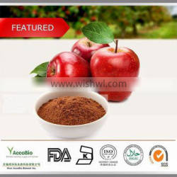 High quality Apple peel extract Supplement, Natural Pure Green Apple extract