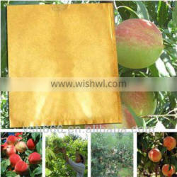 Peach growing paper bag with different size cheap price