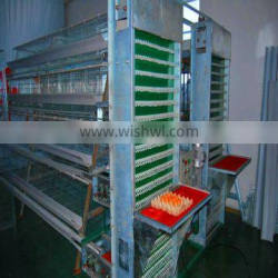 automatic egg collection battery chicken cages