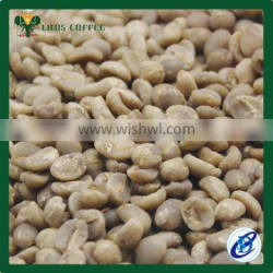 Arabica Green coffee bean export