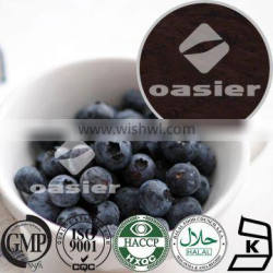 GMP blueberry fruit extract,Factory supply wild blueberry powder,herb blueberry extract liquid