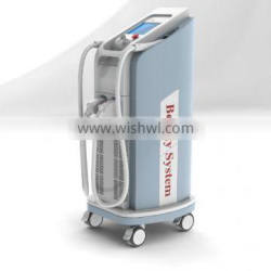 Hot sell skin treatment machines/stretch mark laser removal /wrinkle removal / spot removal laser machine