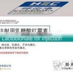 Erythromycin Lactobionate for Injection