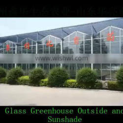 Commercial Modern Display Multi-span Glass Greenhouse For Sale