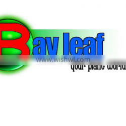 Laurel Leaves: F.A.Q. (Fair Average Quality) Bay Leaves Semi-Processed Bay Leaves Semi-Selected Bay Leaves Hand-Picked