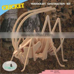 Cricket Wooden Puzzles