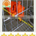 quail cage water drinking system