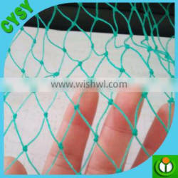 New type agricultural insect net anti birds net