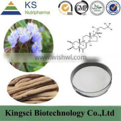 high quality ecdysteroid, ecdysterone 95%, organic ecdysterone extract in herbal extract