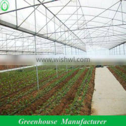 Agricultural Plastic Houses