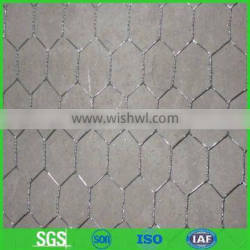 Chicken Wire Mesh for geese/ rabbits and zoo fence