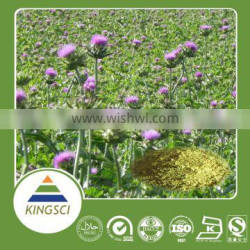 Milk Thistle Extract for Liver 80% Silymarin